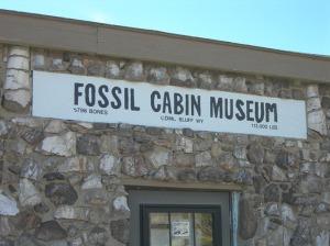 fossil-cabin42